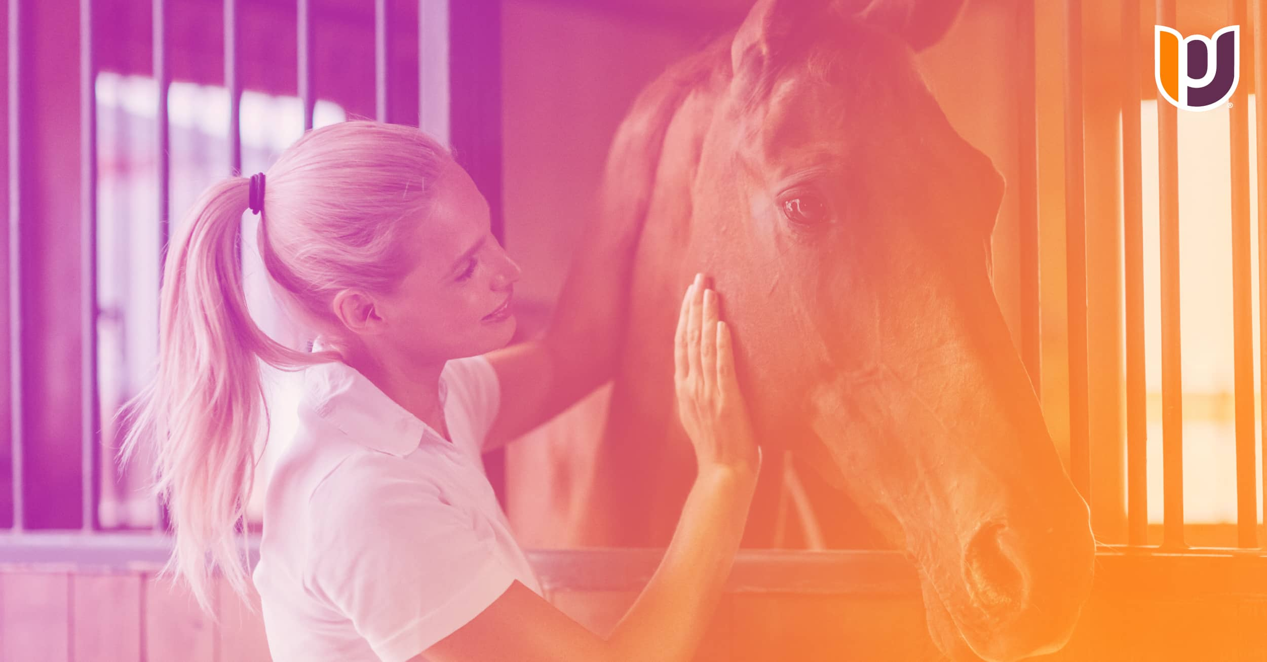 woman petting horse in barn