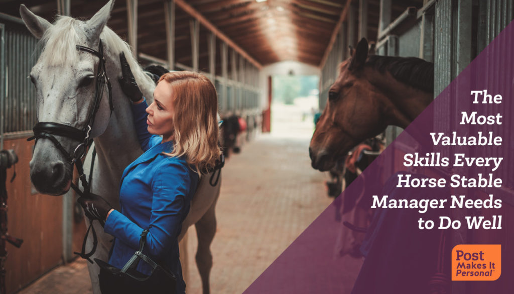 Valuable Skills Every Horse Stable Manager Needs