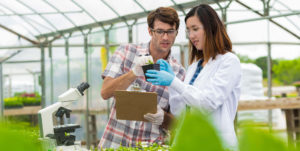 young woman and man in greenhouse looking at plant
