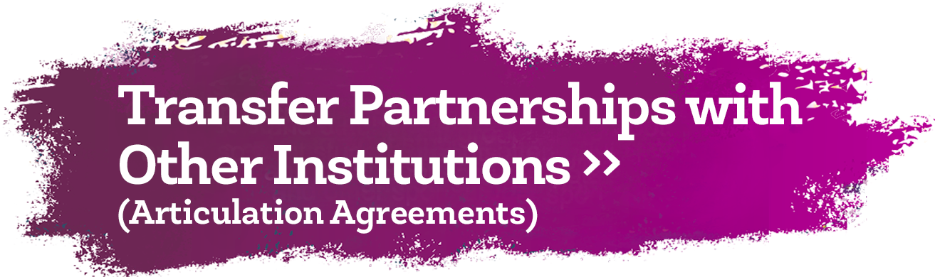 Transfer Partnerships (Articulation Agreements) with Other Institutions