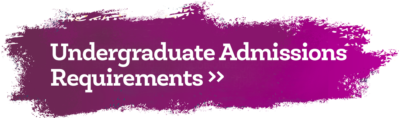 Undergraduate Admissions Requirements