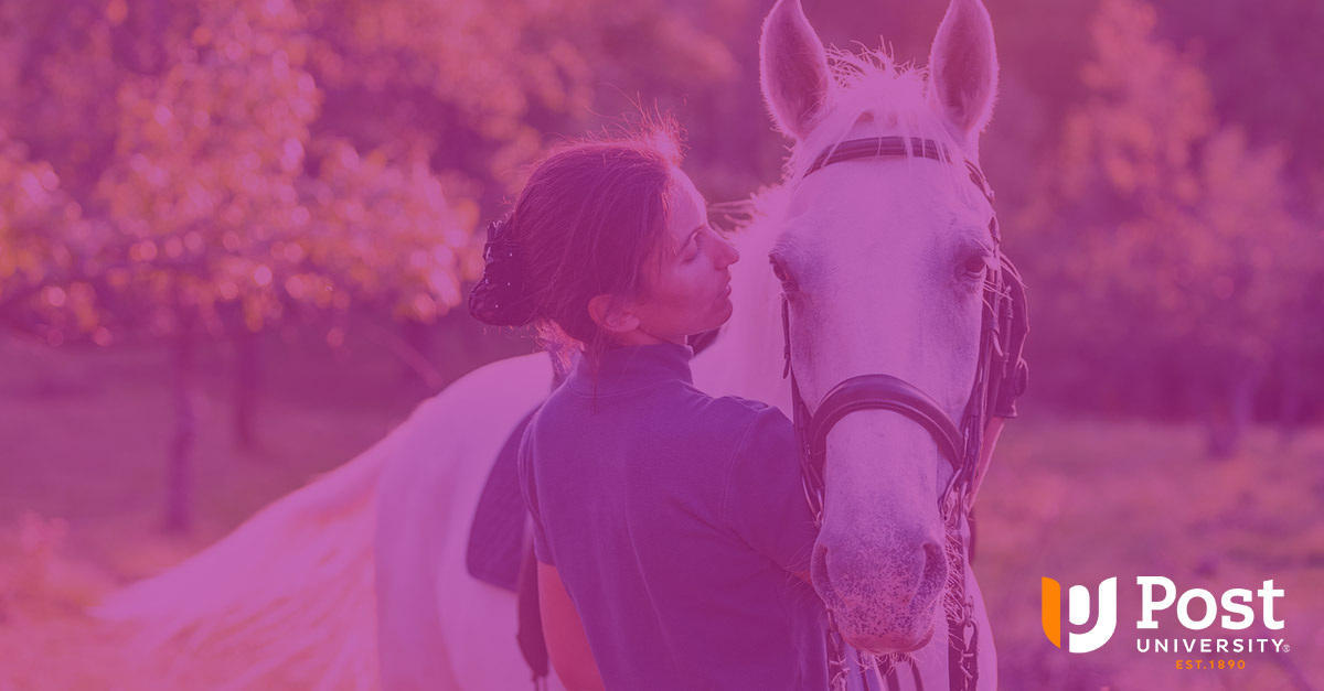 Post University Adds New Articulation Agreement in Equine Studies